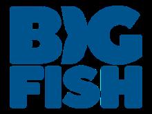 Big Fish kortingscode